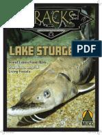 May TRACKS- Lake Sturgeon