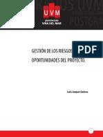 Gestión de los Riesgos y Oportunidades del ProyectoGestión de los Riesgos y Oportunidades del Proyecto opciones de elemento (Imprimible)