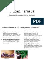 Recalde. Trabajo Tema 8a.pdf