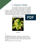 AnexoCorreioMensagem_889221_uvas-brancas-e-tintas