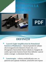 Laserterapia la animale