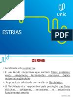 Aula Slide (ESTRIAS)
