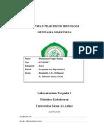 Laporan Praktikum Histologi Genitalia Masculina (1)