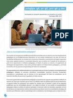Acompañamiento pedagógico-OK.pdf