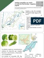 3-Casos estudio Metales Pesados en Colombia.pdf