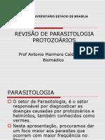 REVISÃO%20DE%20PARASITOLOGIA%20-%20PROTOZOÁRIOS.pptx