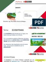 Medio Ambiente sesion 1 - ECOSISTEMAS Y D.S. PAUL
