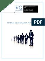 SISTEMAS DE AGRUPACIÓN PROFESIONAL.docx