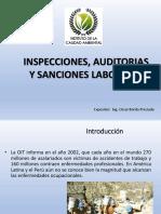 AUDITORÍA, FISCALIZACIÓN E INSPECCIONES DE SEGURIDAD