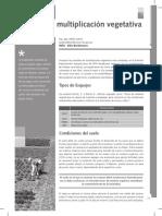 Bordenave esquejes aromáticas.pdf