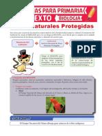 Áreas-Naturales-Protegidas-para-Sexto-de-Primaria.pdf