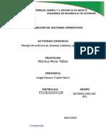 DPSO_U2_EA.docx