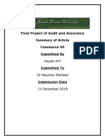 Audit final summary.docx