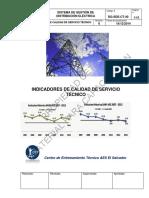 DG-SDE-CT-40-Indicadores de Calidad del Servicio Técnico.pdf