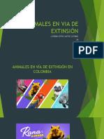 ANIMALES EN VIA DE EXTINSIÓN