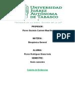 Carpeta de evidencias. Flores Rodriguez Diana Isela.docx