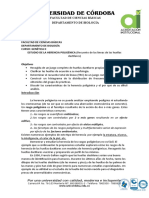 GII 7 PRACTICA  HERENCIA POLIGÉNICA.doc