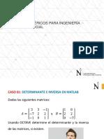 S2.1-PPT-Casos de Matrices-Teoría
