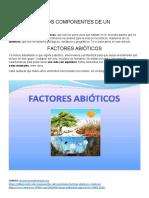 CUÁLES SON LOS COMPONENTES DE UN ECOSISTEMA.docx