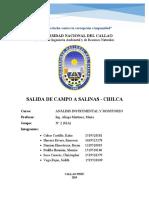 INFORME_SALIDA_DE_CAMPO_SALINAS_-_CHILCA.docx