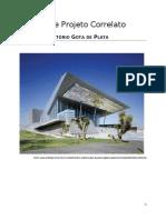 Analise de Projeto Correlato.docx