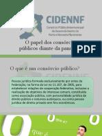 Apresentação CIDENNF - Ezio Tavares