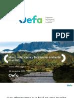 El marco institucional y la fiscalización ambiental en el Peru_220420_EAmes.pdf