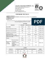 INFORME TÉCNICO Apoyo Elastomérico FL
