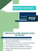 DETERMINACION DEL SEXO.1