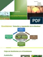 Exposición Ecosistemas (Los llanos Venezolanos)