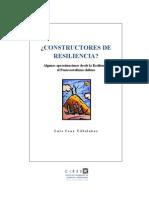 Construct Ores de Resiliencia-luiscruzvillalobos(2009)