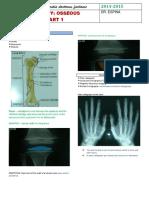 bone.pdf