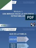 Marco teorico violencia Intrafamiliar.pdf