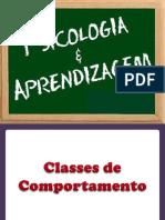 psicologiaadaaprendizagem-140522002755-phpapp02.pdf