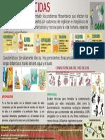 INFOGRAFIA DE LOS PLAGUICIDAS