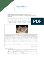 diagnostica_vampi_inicial.pdf