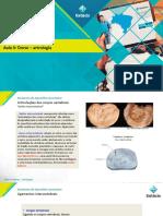 4 - A. Aparelho Locomotor - Dorso - Artrologia.pdf