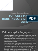Top cele mai rare insecte
