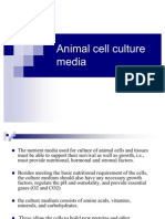 Animal Cell Culture Media