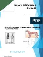 Anatomia veterinaria, material de apoyo