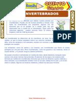 Los-Invertebrados-para-Quinto-Grado-de-Primaria.pdf