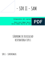 SDR 1 Y 2 SAM.pdf