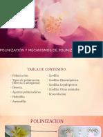 POLINIZACIÓN Y MECANISMOS DE POLINIZACIÓN.
