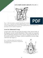 Neck Dissection Part 2