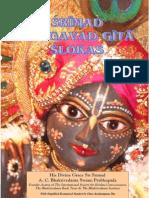 Gita Slokas Book ENGLISH Translations Presentation format