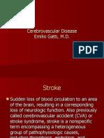 Cerebrovascular Disease residents