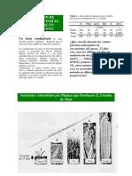 absorcion-de-nutrientes-por-el-maiz-alto-rendimiento.pdf