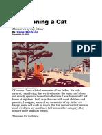 Murakami - Abandoning a Cat