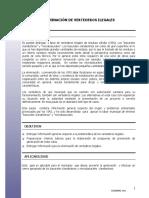 Casas Reformadas 2020.pdf