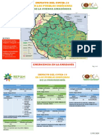 Mapa Ppii Panamazonia 14.05.2020